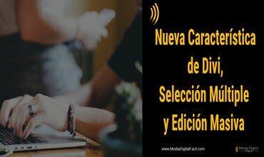 Nueva Característica de Divi, Selección Múltiple y Edición Masiva
