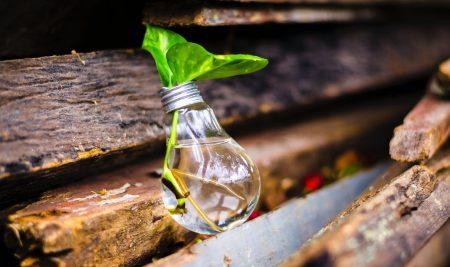 Cómo encontrar y emprender una idea de negocio rentable
